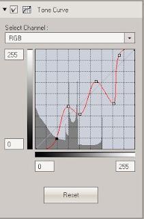 Tone Curve Tool Interface