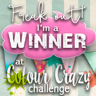 2 x Colour Crazy Craft Challenge Winner