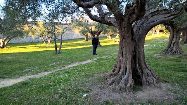 Itinerari, percorsi, vacanze sul Lago Trasimeno