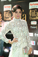 Poonam Kaur in Beautiful Floor Length Gown at IIFA Utsavam Awards 2017  Day 2  Exclusive 33.JPG