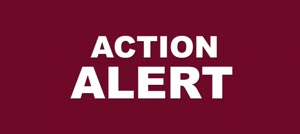 ACTION ALERT sign, white letters on burgundy background