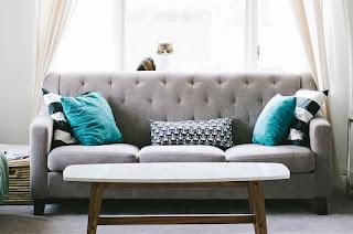 Cara Menghilangkan Jamur di Sofa Kulit