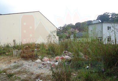 Đất nền biệt thự diện tích rộng phường 5 Đà Lạt