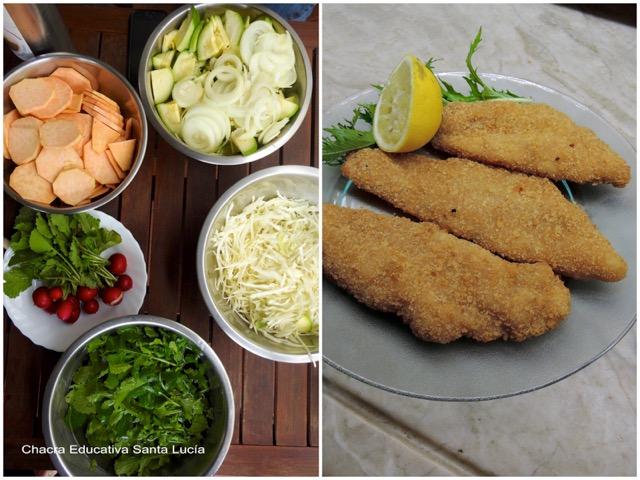 Hortalizas lavadas y cortadas / Milanesas de pescado al horno - Chacra Educativa Santa Lucía
