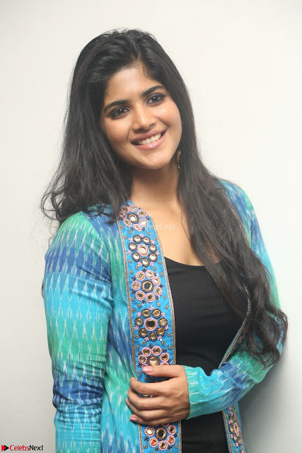 Megha Akash in a beautiful Anarkali dress with Long Jacket at LIE success meet ~  Exclusive Celebrities Galleries 001.JPG