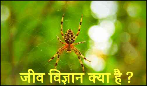 What is Biology in Hindi
