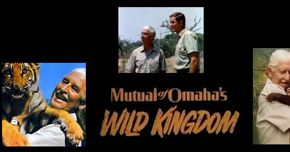 The Grand Tour Episode 3 >> Mutual of Omaha's Wild Kingdom - 50 Years of Adventure in ...