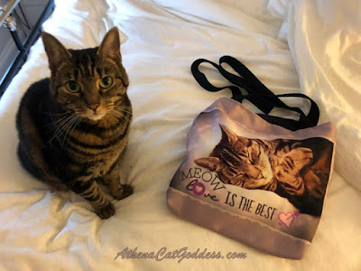 cat posing with cat-themed tote bag