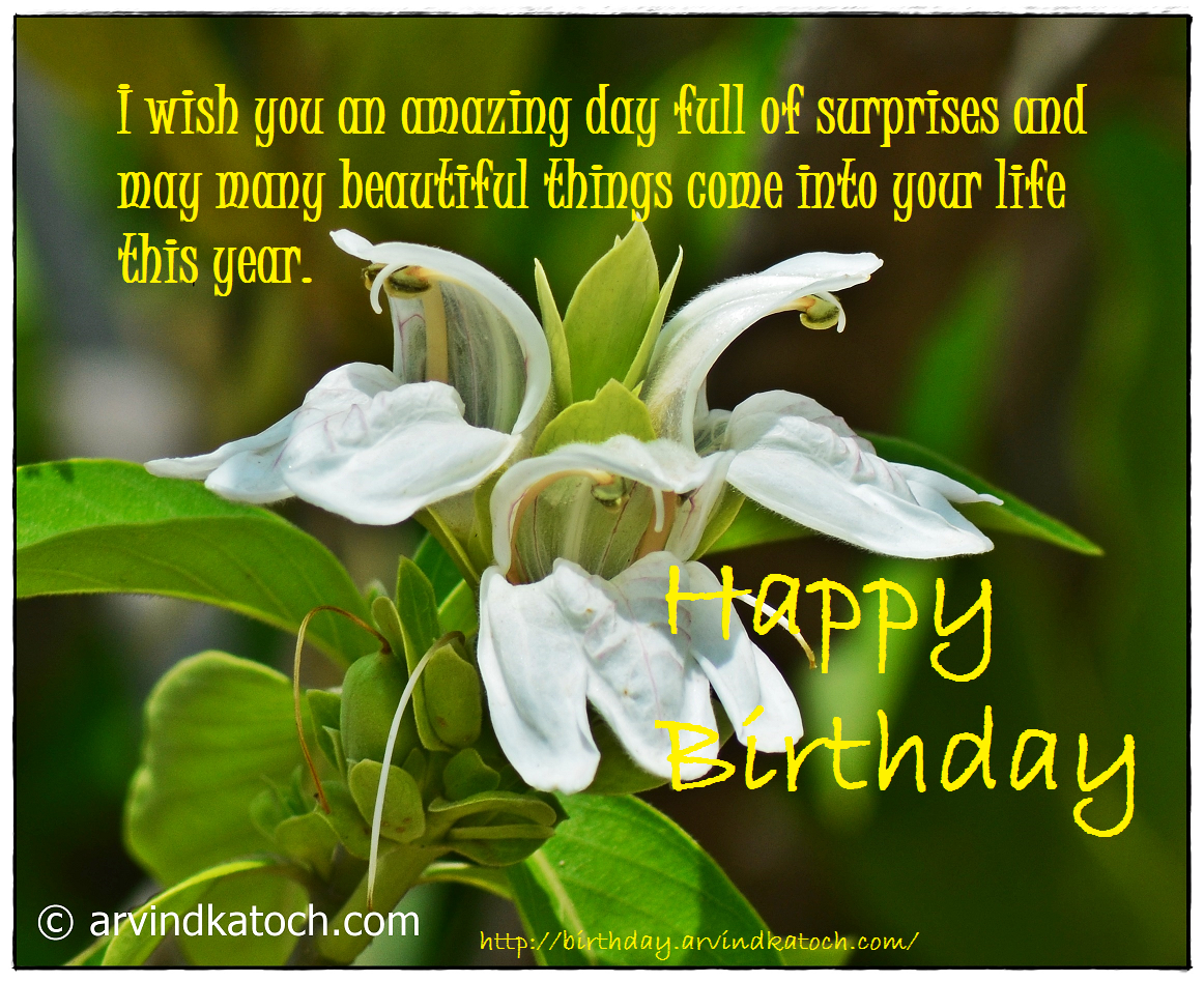 Beautiful, Birthday Card, Happy Birthday, Surprises, amazing, life