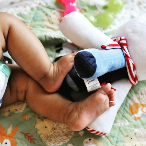 Baby-Feet-tasteasyougo.com