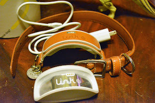 Smart collar with app that doesn't work properly so it's basically an expensive paperweight.
