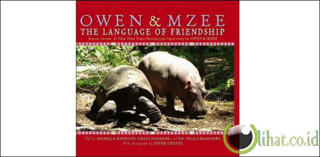 Owen & Mzee : Keunikan Ikatan Persahabatan Dua Spesies