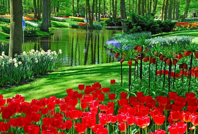 Jardins coloridos pelo mundo