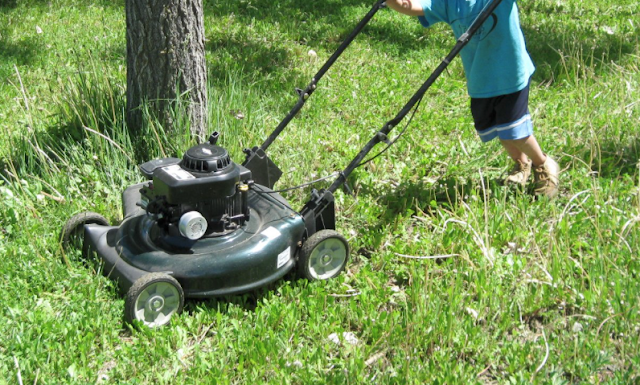 High school student makes six figures mowing lawns