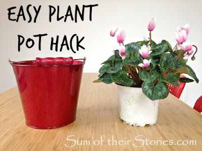 Simple trick to make decorative planters a better fit for your house plants