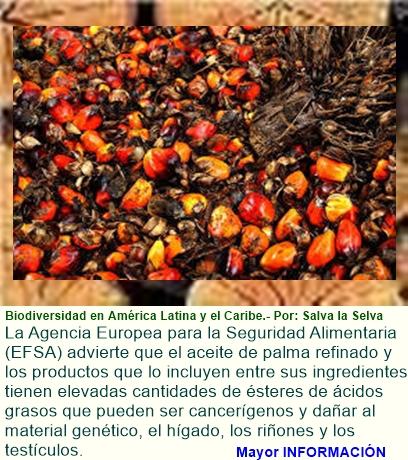 Petición - Aceite de palma: malo para la naturaleza, malo para tu salud