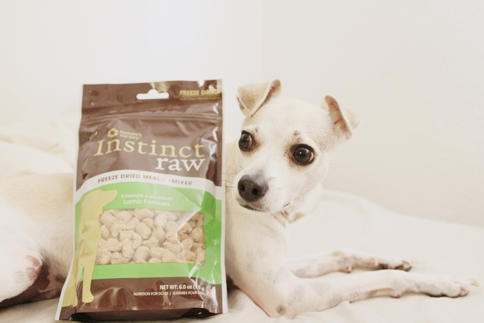 Freeze Dried Dog Treats Private Label Uk