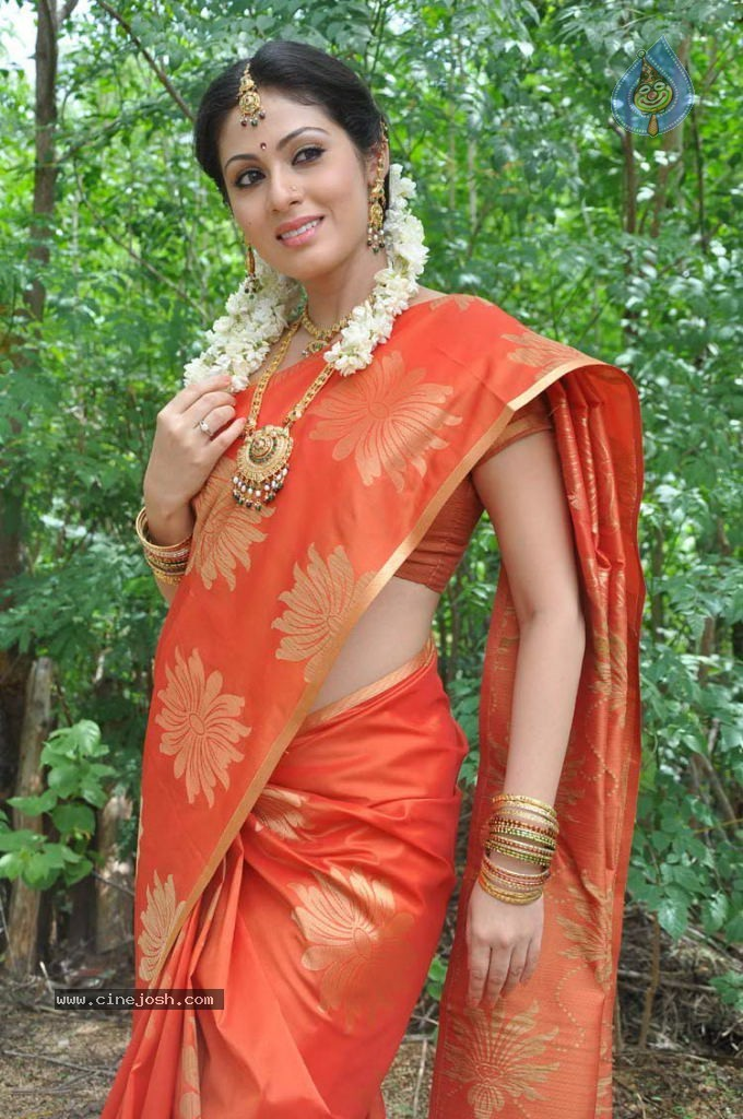 Actress Sexy Hd Images Kollywood Actress Sadha Sexy Hd Images-6262