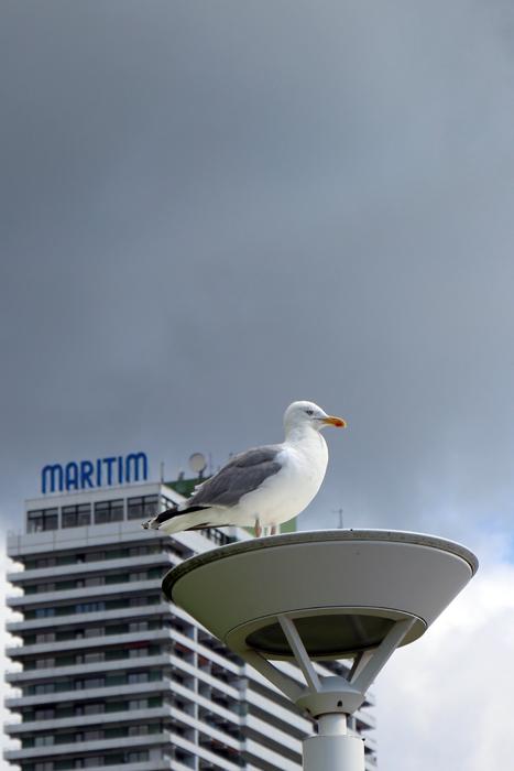 Maritim Hotel Travemünde