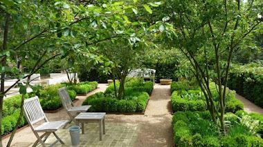 Si te gusta ese jardín, vótalo. SGD People's Choice Award 2016