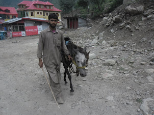 A Kashmiri with his pony.