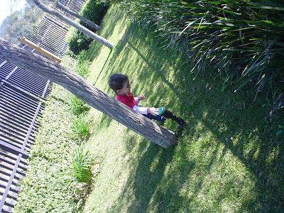 Passeio com Criança - Vinícola Goés