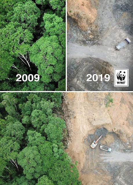 Perubahan Lingkungan