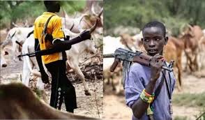 Herdsmen kill five in Benue after Vice President Osinbajo left