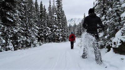 Nakiska Guided Snowshoeing Tour
