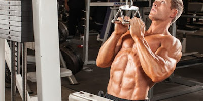 Muscle Guide: Basic Back Workouts For Mass