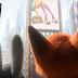 Disney divulga novo trailer de Zootopia + data de estreia!
