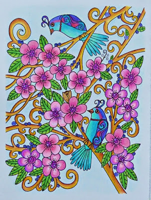 Magical birds completed coloring page