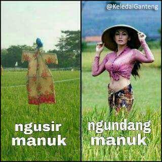 Gambar lucu Bahasa Jawa 15