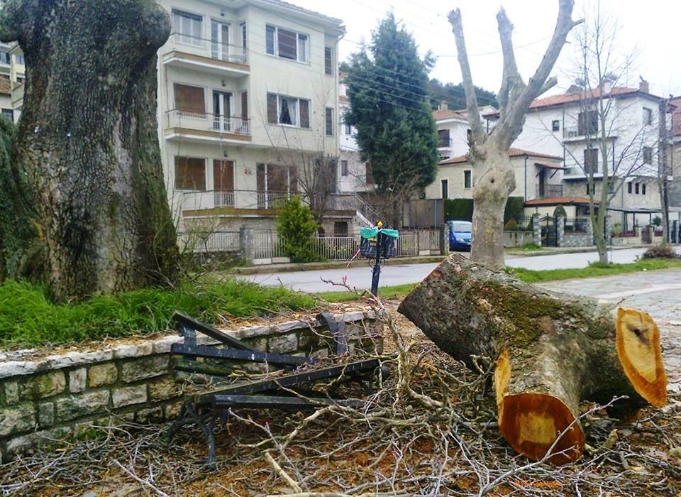 Καστοριά: Πράξεις ντροπής- Εικόνες ντροπής