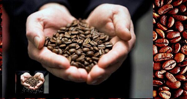 The Power Of Coffee Roasters, coffee roasting, roasting coffee