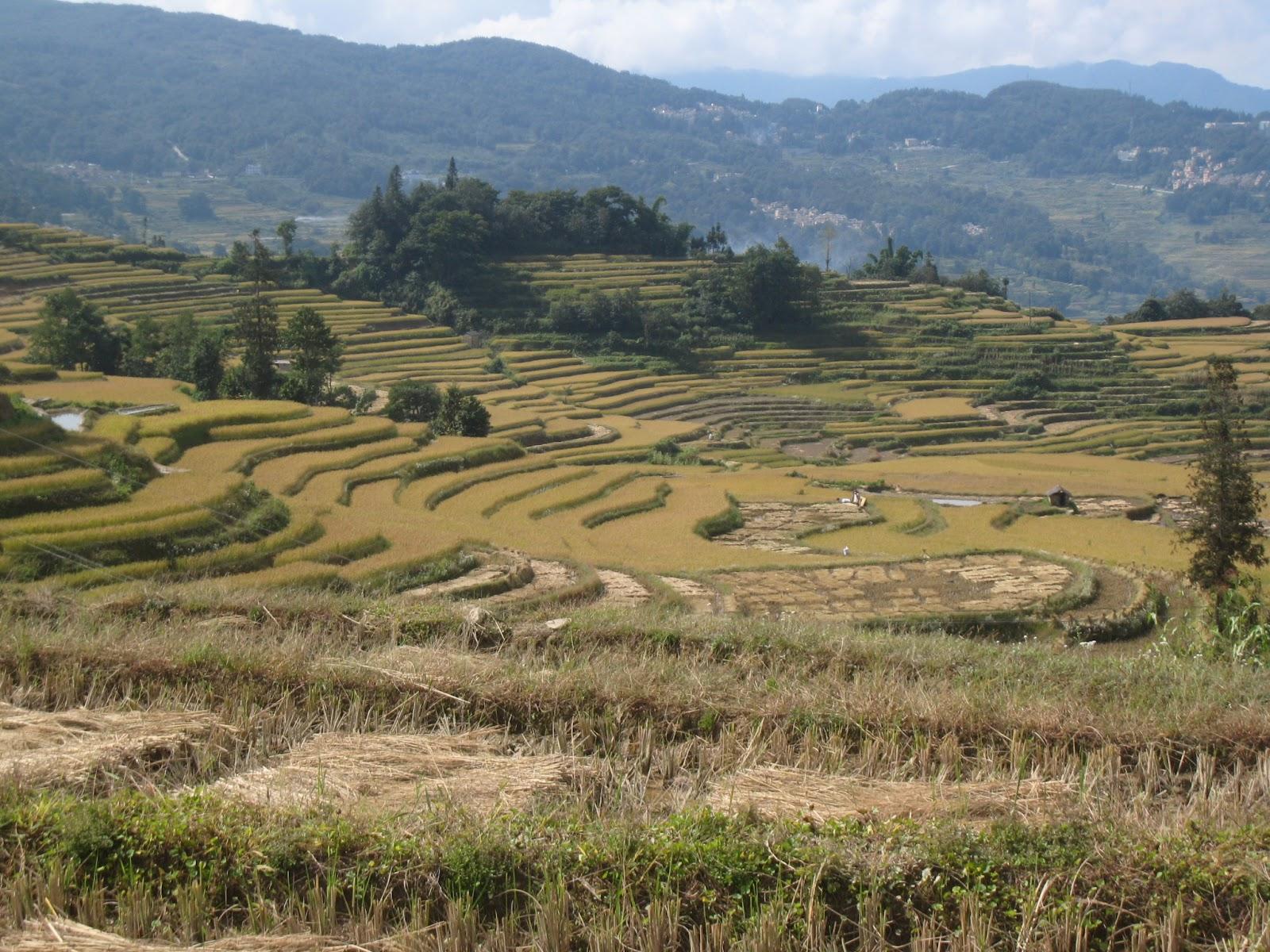Aménagement anti érosif en agriculture