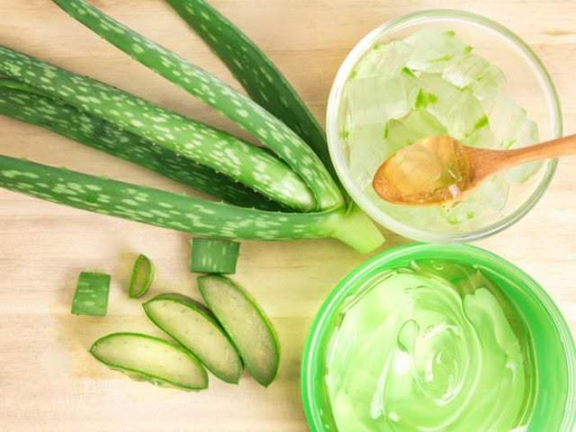 http://www.nutrientfood.net/p/home.html