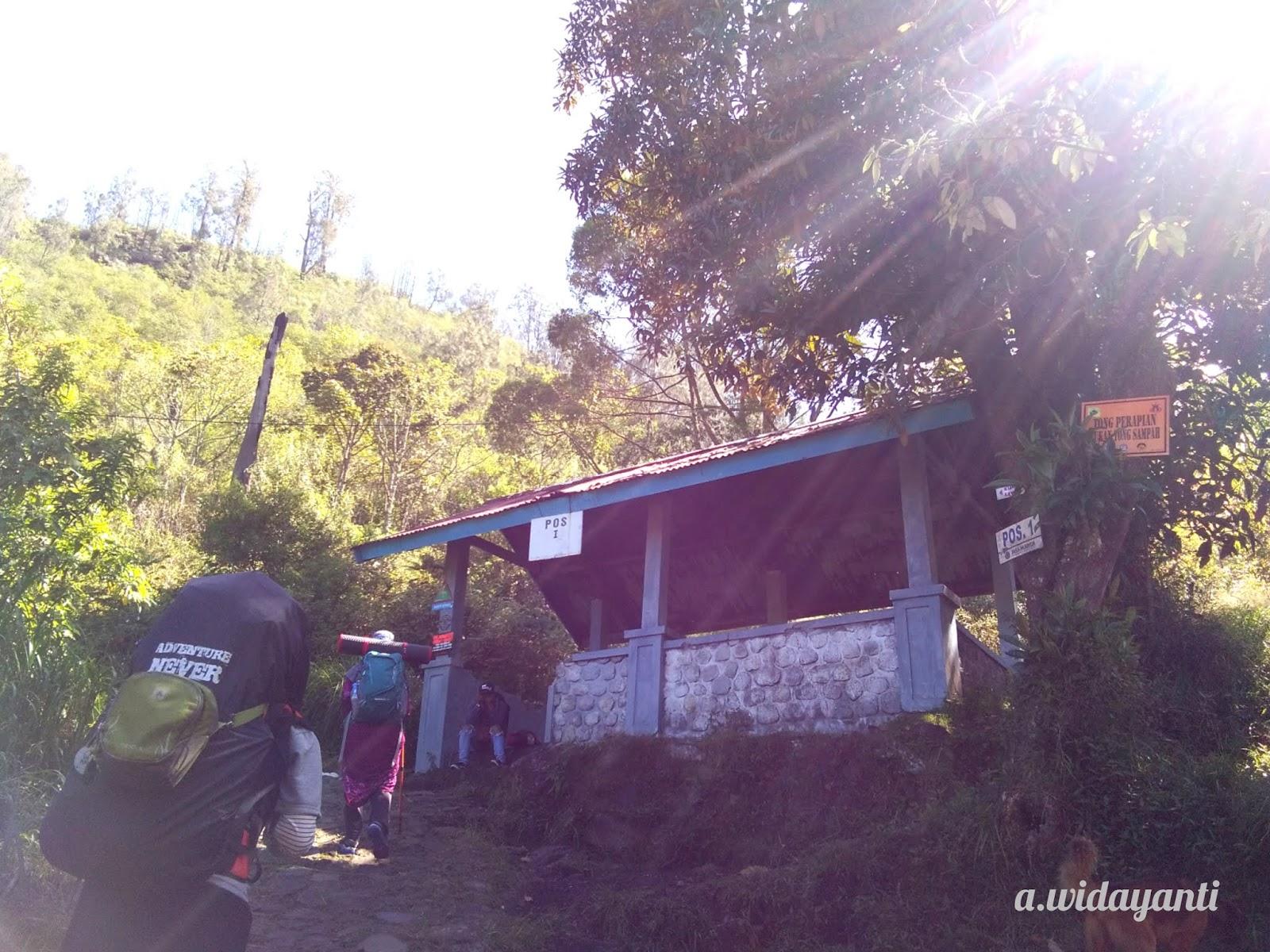 View Pendakian Gunung Lawu Via Cemoro Sewu 2019 Pictures