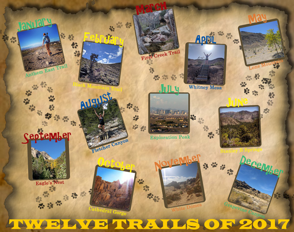 Twelve Trails of 2017