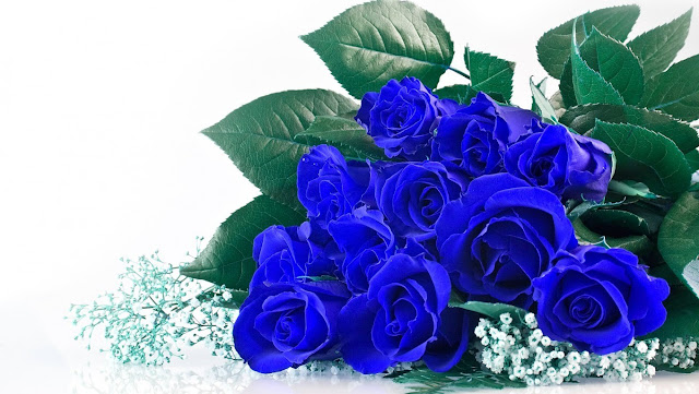 Truyện ngắn: Hoa hồng Xanh (Chap2)