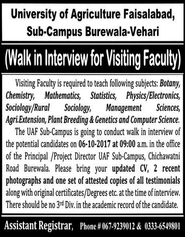 Latest Teaching Jobs in University of Agriculture Faisalabad