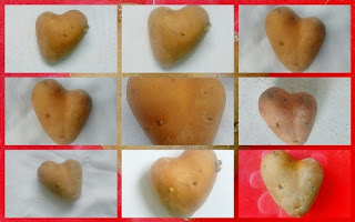 Vegetable heart photo collage