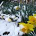Επιστροφή του χειμώνα με τοπικά φαινόμενα παγετού και χιονοπτώσεις