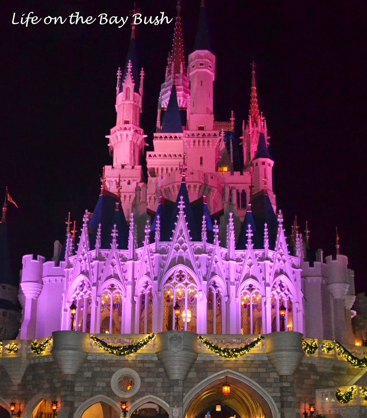 The castle at the Magic Kingdom at Christmas