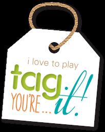 http://tagyoureitchallenge.blogspot.com/
