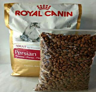 Merk Makanan Kucing Super Premium Royal Canin