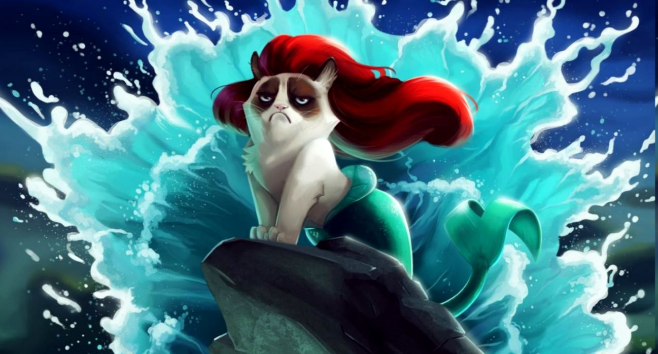 cat Grumpy Cat The Little Mermaid Disney Humor Wallpapers HD