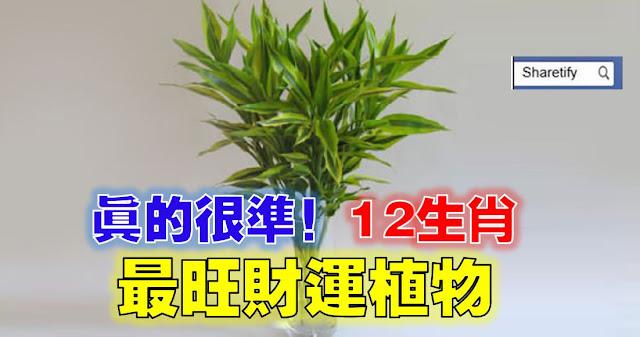 http://www.sharetify.com/2016/07/blog-post_565.html