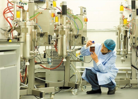 Industrial Bio Technology