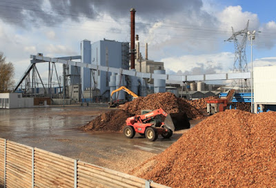 Les deu plantes de biomassa del món
